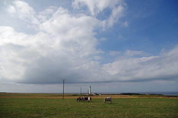 Phare d'Antifer - Véloroute de la côte d'albâtre
