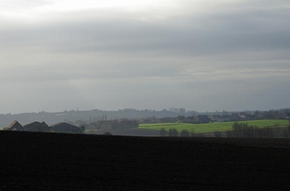 Champs en hiver - Monts des Flandres