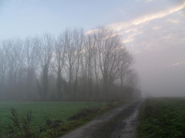 Paysage dans le brouillard - Raid VTT Saint Saulve 2013