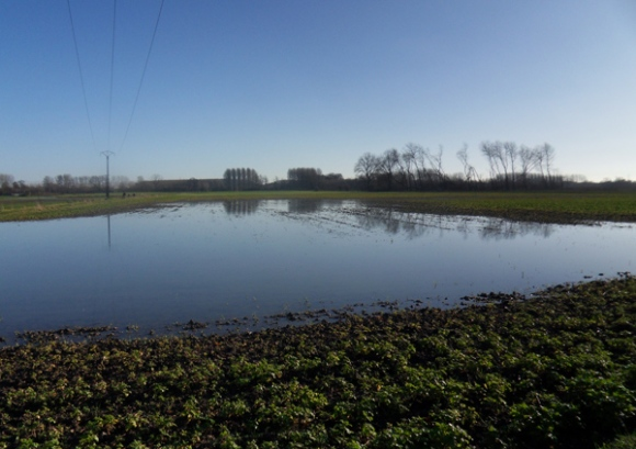 Ronde des rois VTT 2014 - champ inondé