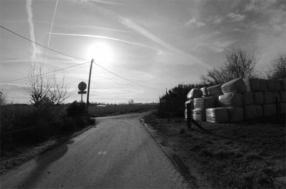 Paysage - Retrouvailles 2014