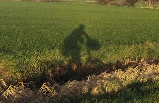 Cycliste ombre portée