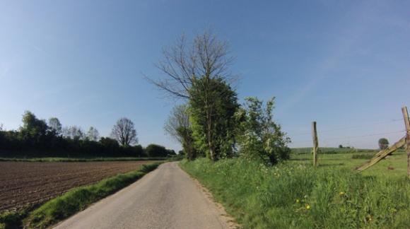 Paysage - Des Weppes à l'Artois Radinghem 2014