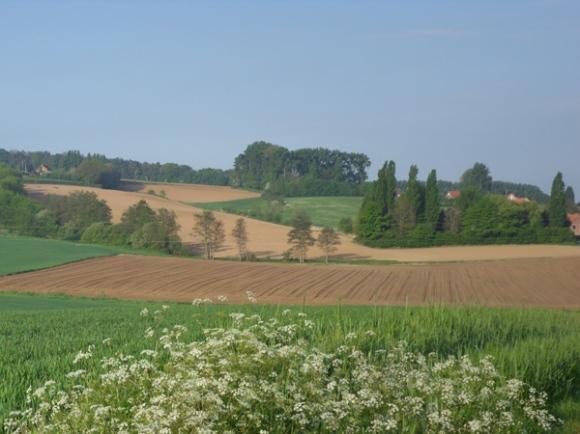 Paysage - Randonnée de Boeschepe 2014