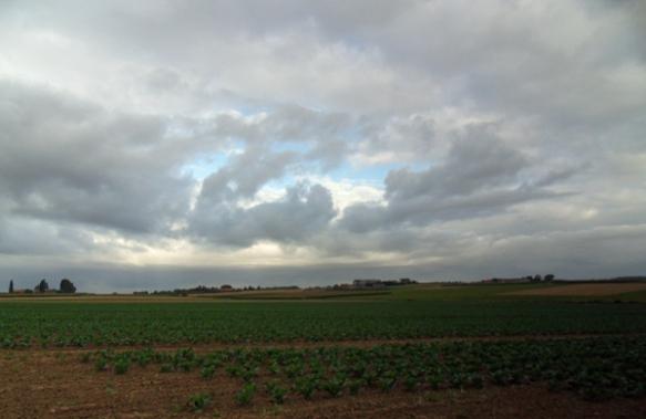 Ciel tourmenté près de Neuwkerque