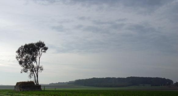 Randonnée Provin 2014 - Paysage