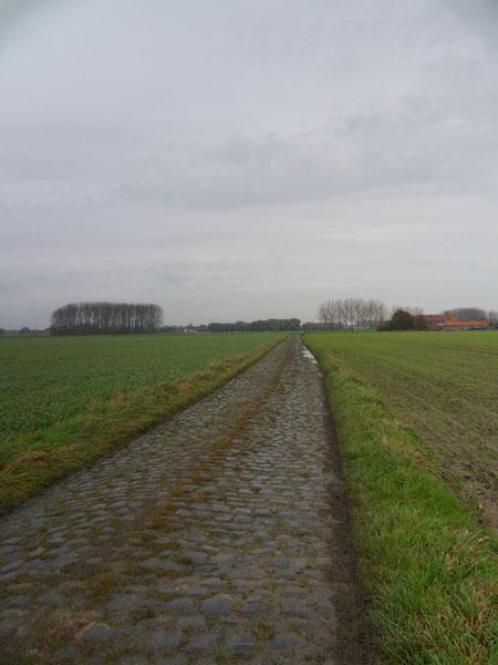 Willems VTT 2014 paysage