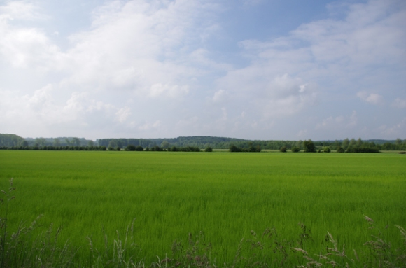 Vallée de la Canche