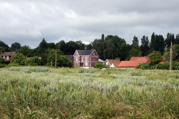 Willems 2015 141