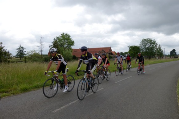 Willems 2015 133