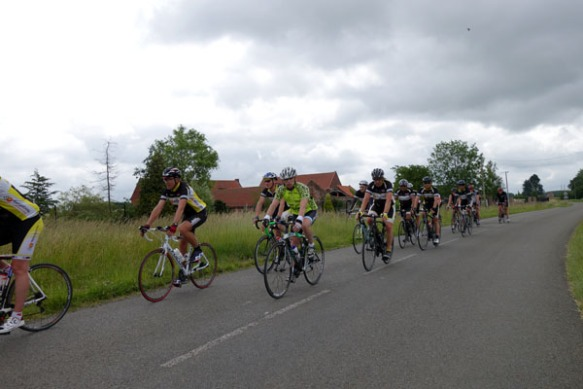 Willems 2015 131
