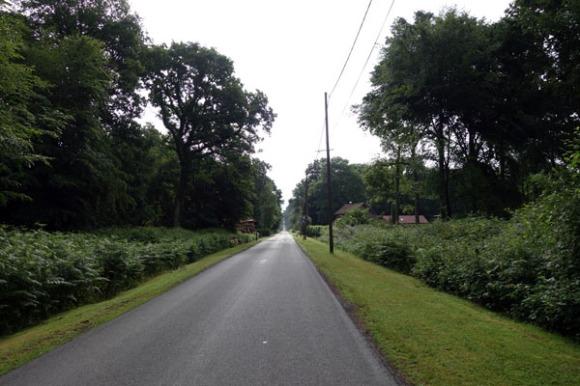 Willems 2015 121