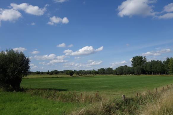 Lille Gand 32