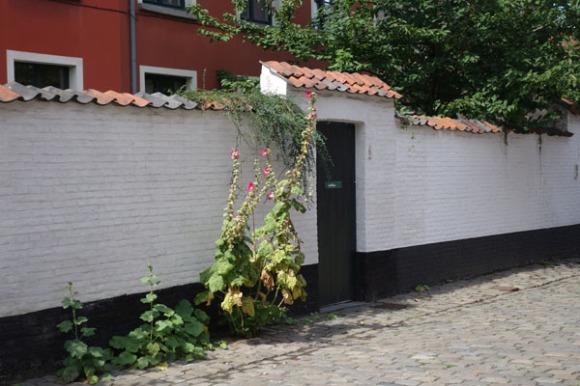 Lille Gand 20