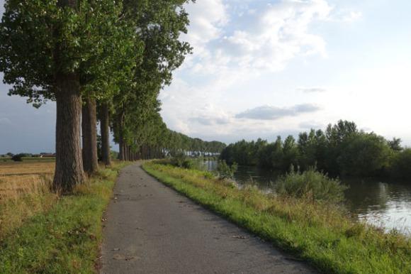 Lille Gand 38