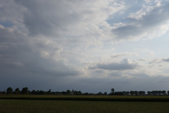 Lille Gand 37