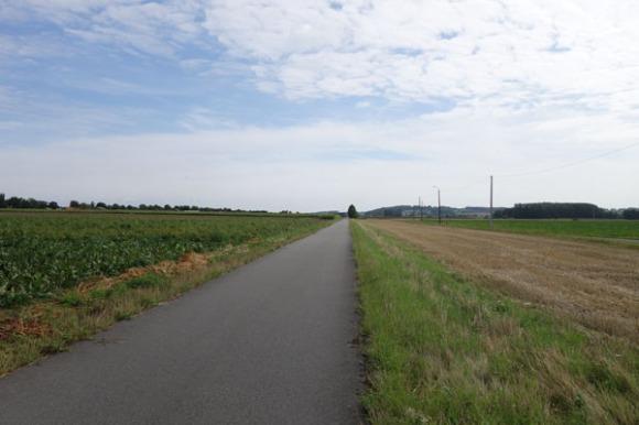 Lille Gand 3