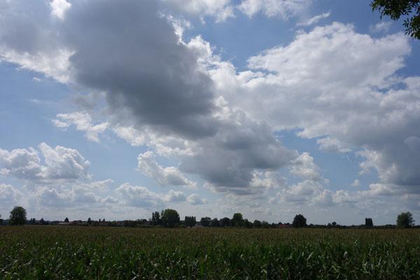 Lille Gand 14