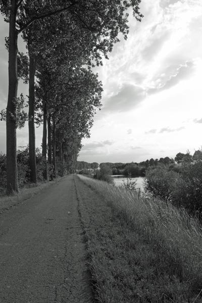 Lille Gand 62