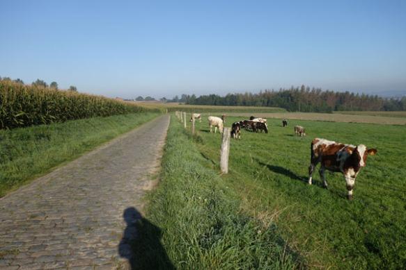 Monts et Moulins Roubaix 2015 63