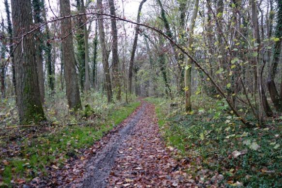 Randonnee des trois vallees - Saint Saulve 2015  19