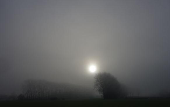 Paysages dans la brume -  7