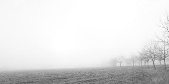 Paysages dans la brume -  1