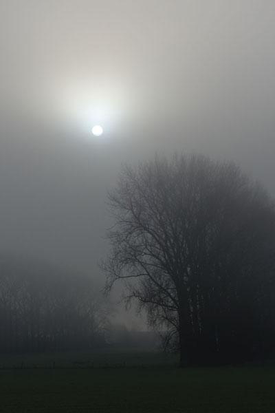 Paysages dans la brume -  6