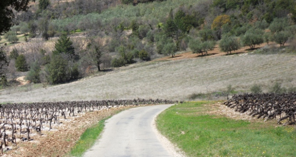 Vallée du Toulourenc 3