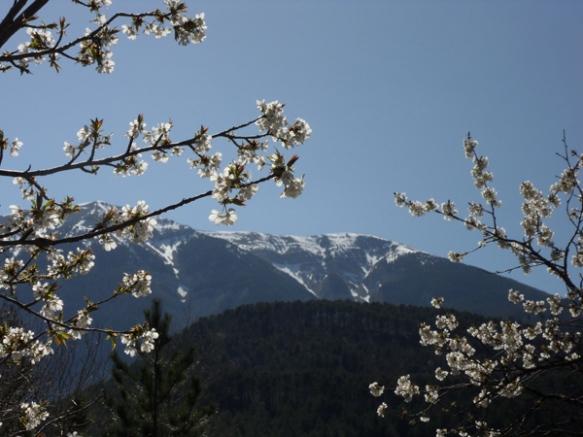 Vallée du Toulourenc 10