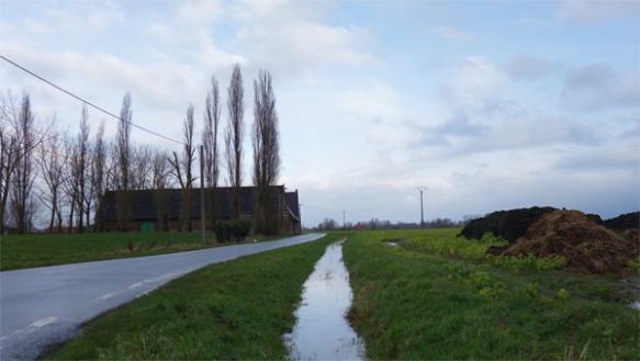 Tourcoing 2016 31