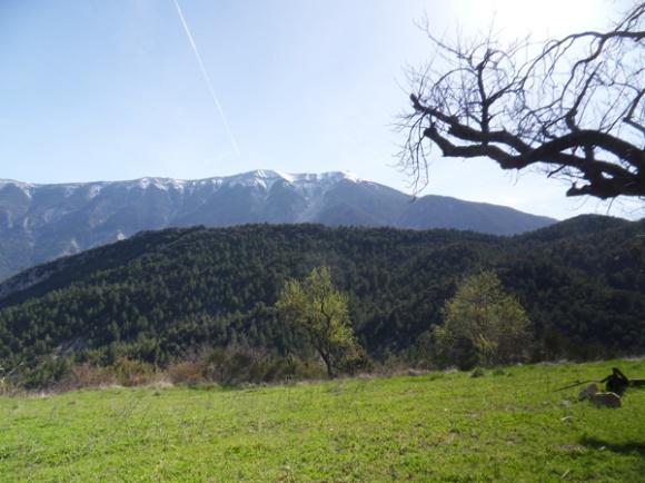 Vallée du Toulourenc 26