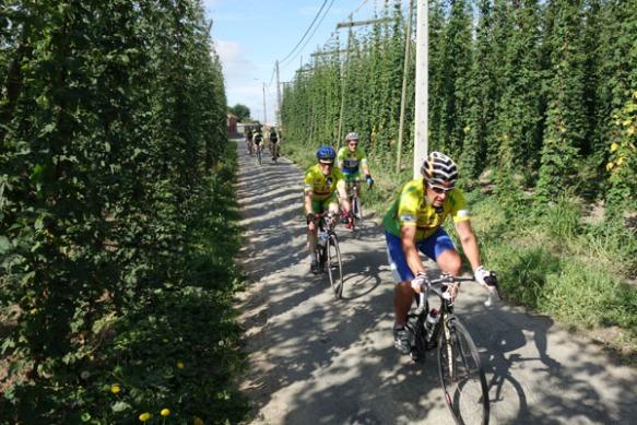 Route du Houblon - Comines 2016 99