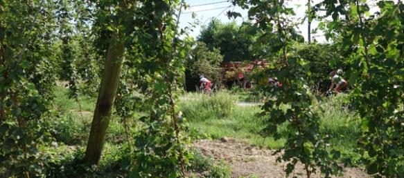 Route du Houblon - Comines 2016 135