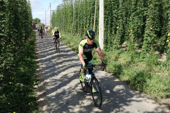 Route du Houblon - Comines 2016 90