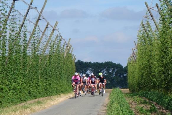 Route du Houblon - Comines 2016 114