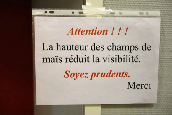 Randonnee de la Saint Michel - Quesnoy 2016 5