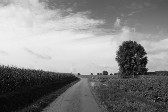 Brevet Memorial Freddy Lemaire- Ploegsteert 2016 118