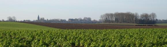 vtt-de-le-ferme-fleurie-hollain-2016-123