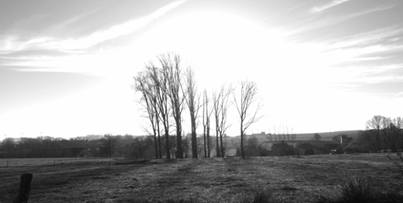vtt-de-le-ferme-fleurie-hollain-2016-79